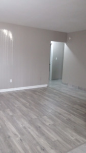 1 & 2 BDRM Newly Renovated Units - great location and value