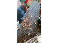 Scrap fencing,,,,Free