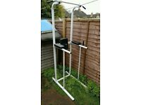 Multifunction Gym Tower in mint condition