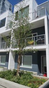 Brand new town home in Brentwood next to University of Calgary