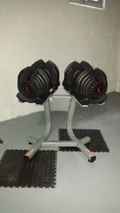 Bowflex 1090 Dumbbells with Stand