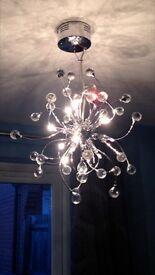 Ornate Ceiling Light