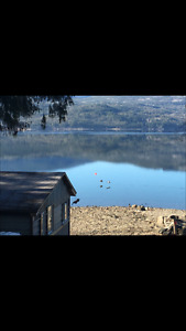 Waterfront Rustic Cabin For Rent on Shuswap Lake