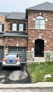 Freehold 3 br Townhouse for rent in Mt.Pleasant  Brampton