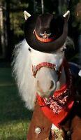 Ponies/ Bayard animals/Birthdays/Events