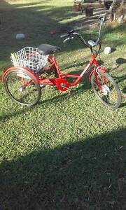 36 volt electric pedal assisted 5 speed Gomier trike, great fun Belmont South Lake Macquarie Area Preview