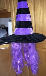 Witch Hat with Purple Hair