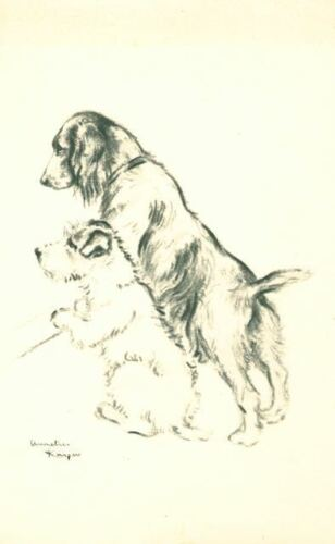 Old Dog Postcard Sealyham Terrier & Cocker Spaniel Annelies Kuiper Holland c1920