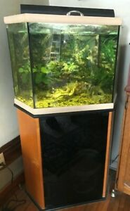 Hex Aquarium with Stand