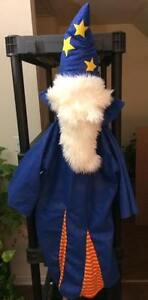HIGH QUALITY WIZARD COSTUME NEVER USED REALLY  COOL