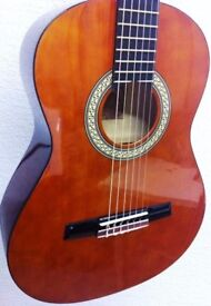 Valencia full size guitar and carry case.