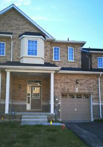 New Wasaga Beach Home for RENT