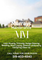 Murrays Maintenance
