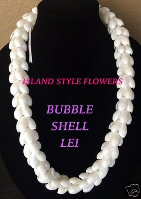 Hawaii Wedding Bubble Shell Braided Lei Necklace Jewelry Graduation Luau-White