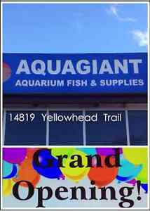 Aquagiant 20% off everything this weekend