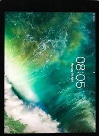 iPad Pro 9.7inch screen 32GB Used