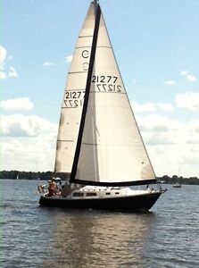 Sailboat reduced price for end of season sale!
