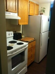 Renovated 2 Bedroom Apartment for May 1st!