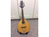 Celtic Mandolin by Vintage (J.H.Skewes)