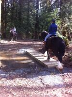 Trail ride with confidence