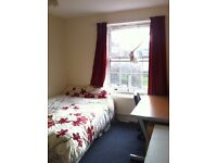 Spacious Double Room for Single occupancy in North london Zone 2