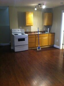 1bedroom basement apartment (all included)