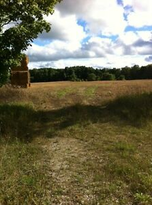 Great Building Site on Partially Organic Hobby Farm