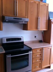 Used Oak Cabinetry w/ countertop