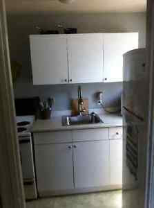 Bachelor Apartment near Brock&Davis- can be furnished