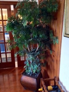 Tree Decor - Artifical Real Life Looking 6 feet tall