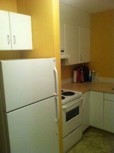 2-Bedroom Apartment Available For Rent Downtown Edmonton ASAP Edmonton Edmonton Area image 6