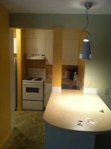 2-Bedroom Apartment Available For Rent Downtown Edmonton ASAP Edmonton Edmonton Area image 2