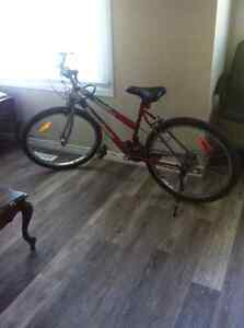 Selling my supercycle bicycle and U lock