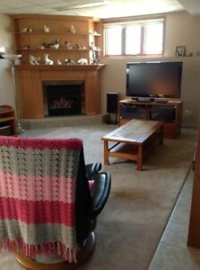 Large one bedroom apartment for rent gas fireplace