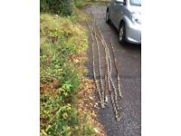used 3/8 galvanised anchor chain 60 metre length includes stainless steel swivel collect only argyll