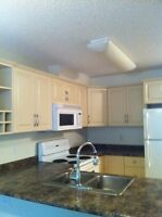 1/2 Off 1st Month! 2BR 2BTRM Condo in Callingwood! Must See!!