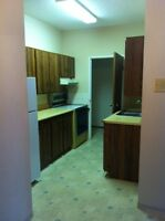 Quiet/Clean Downtown w/view, Utilities Incld, MI SPECIAL!
