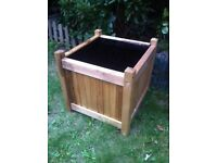 Brand New Wooden Planter: Will Give a Wisteria Bush FREE to the first near offer