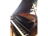 For Sale - Waldstein Baby Grand Piano.