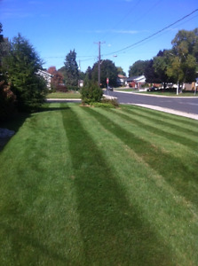 Doug and Son lawncutting services