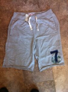 AE American Eagle Men's SPORTSWEAR Shorts BNWT Size Large