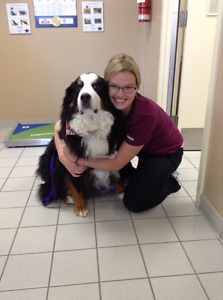 Come FEEL the Difference at Princess & Downtown Animal Hospitals