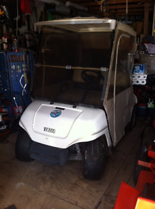 Golf Cart with Custom Cover