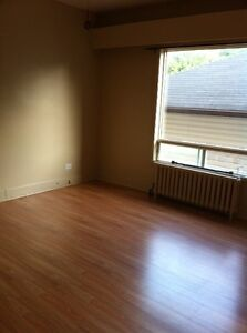 1 Bedroom Apartment Available July 1 - Close to Hospital Area