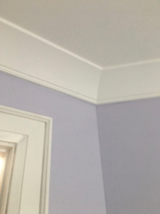 Finish Carpentry Speciality Crown Moulding and Trims