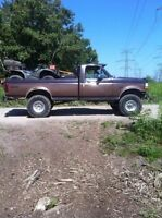 1995 Ford F-150 lifted and low kms!!!!