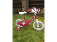 Immaculate Dawes Childs Bicycle