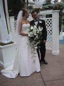 Elegant Brides by Demetrios gown