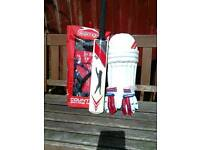 Cricket bat,pads and gloves