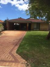 Willagee house big back yard Willagee Melville Area Preview